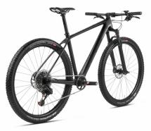 Accent Rower Peak 29 Carbon Boost Team
