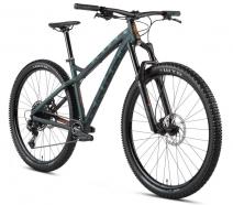 "Dartmoor - Rower Primal EVO 29"""