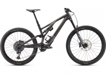 Specialized - Rower Stumpjumper EVO LTD Carbon 29""